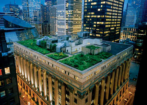 green-roof-chicago